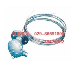 WZPK铠装铂热电阻WZPK-236 WZPK2 西安铠装铂热电阻WZPK-236 WZPK2