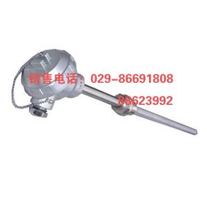 WZP-231 WZP-230热电阻 铂电阻