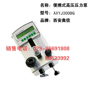 便携式高压压力检验仪 AXYJ3000BG