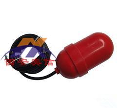 浮球液位开关CS1-RC-5/10/20 电缆浮球液位开关