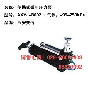 压力泵 AXYJ-B002 便携微压压力泵