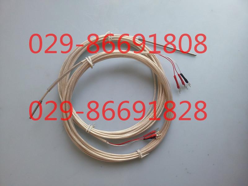 双支铂热电阻SH2620