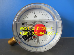 径向耐震电接点压力表YTNXC-100