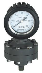 全塑隔膜压力表,耐强腐压力表YTP-100S,YTP-75S