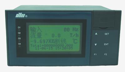DY21LWR DY2000(LWR)液晶显示热水热量积算SD卡数据存储显示仪