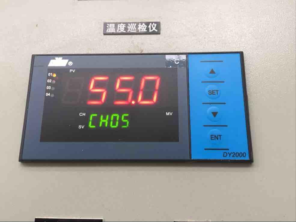 香港东辉智能巡检仪 东辉大延牌DY2000温度巡检仪DY21D0208