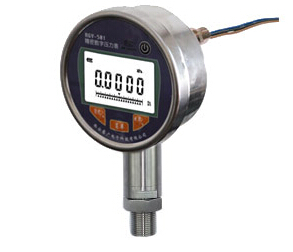 AXSY-100K电子式压力开关