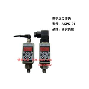 AXPK-01 电子式压力开关