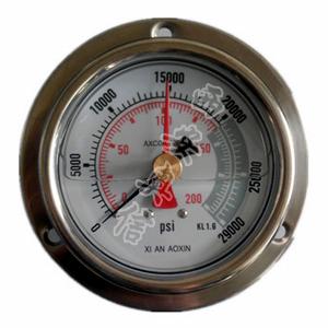 AXCG-100BF-ZT超高压不锈钢耐震压力表-轴向带边 200Mpa