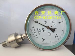 YTPF-100B不锈钢隔膜压力表(1.0