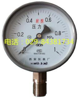 西安仪表厂YTS-100耐酸压力表